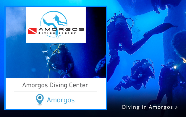 Scuba Diving in Greece. Amorgos Diving Center. Amorgos island