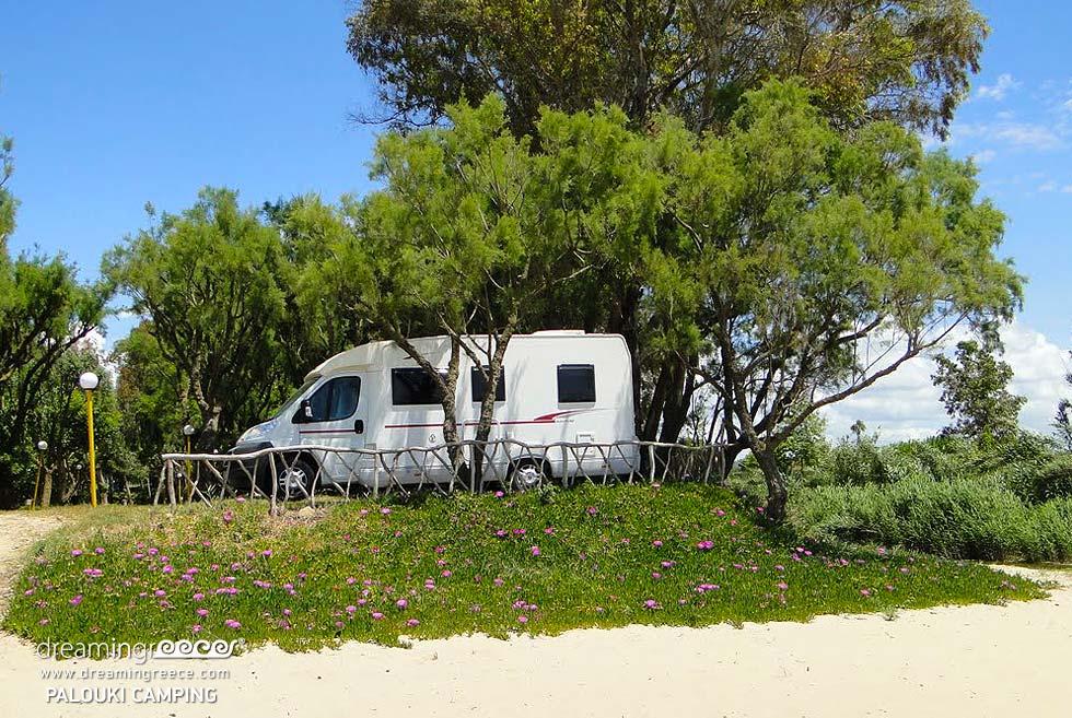 Camping Palouki in Amaliada. Summer Holidays in Greece