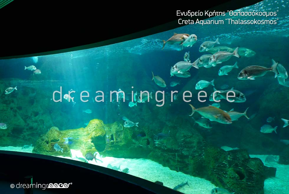 Heraklion Crete island Greece - Creta Aquarium Thalassokosmos