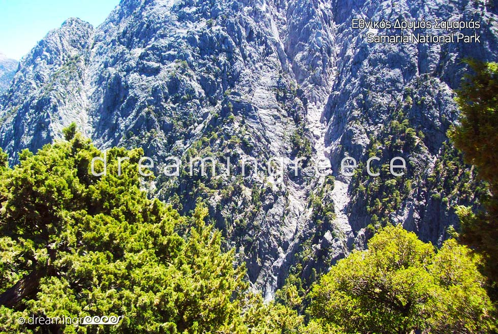 Samaria National Park Chania Crete island. Vacations Greece