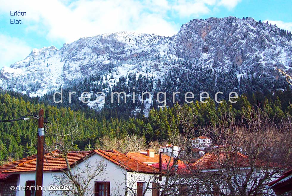 Travel Guide of Greece. Winter Holidays in Elati Pertouli Thessaly.