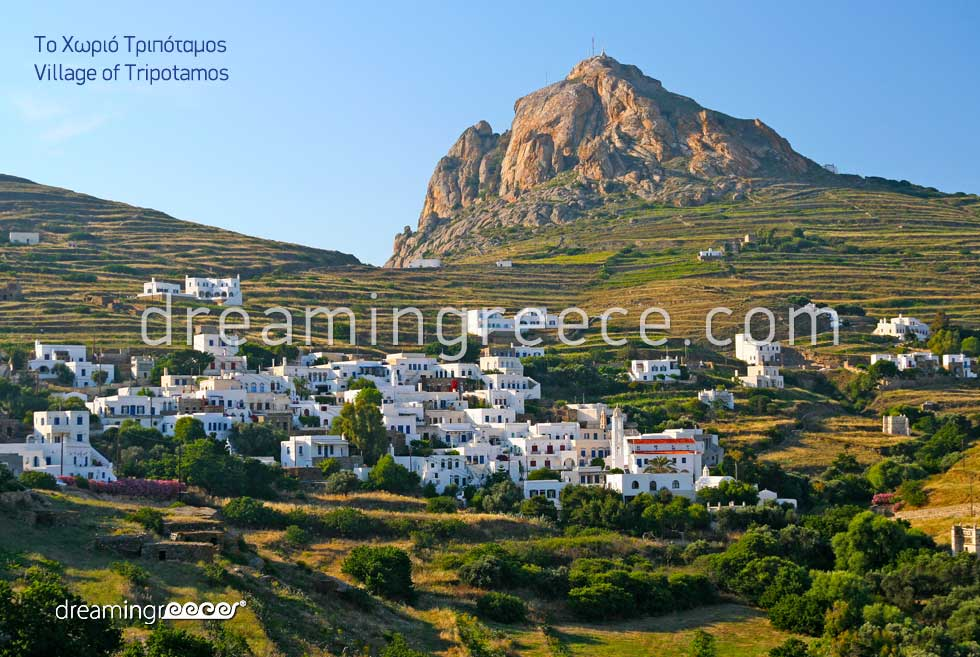 Tripotamos Village Tinos. Holidays in Greece