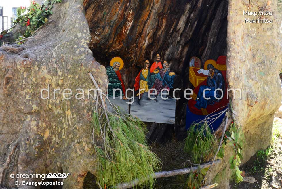 Pelion Thessaly. Travel Guides. Vacations in Pelion Greece.