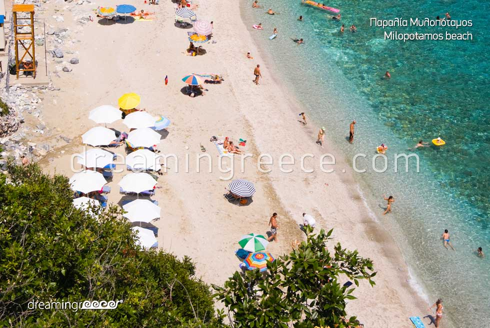 Milopotamos beach in Pelion Beaches in Greece. Vacations Pelion Greek Travel.