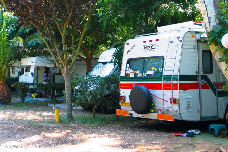 Camping Palouki in Amaliada. Camping in Greece. Holidays in Greece.